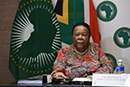 Opening Remarks by the Chairperson of the Executive Council of the African Union (AU), Minister Naledi Pandor, during the 37th Ordinary Session of the Executive Council, Pretoria, South Africa, 13 to 14 October 2020.